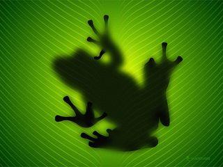 Vladstudio_frog_1024x768
